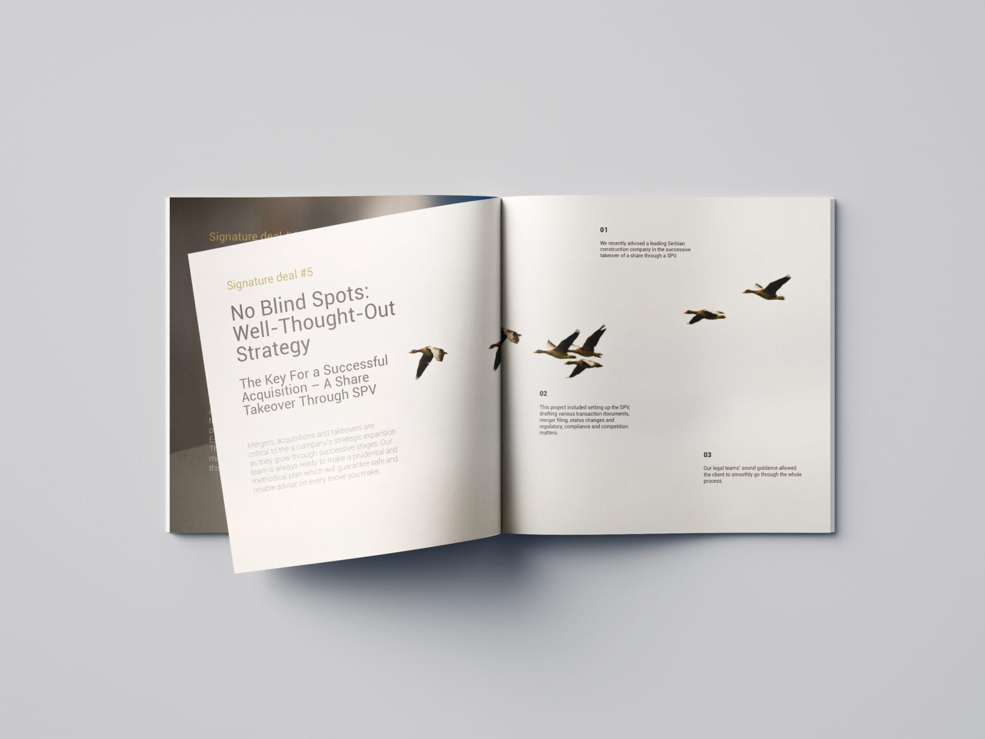AVS Legal Brochure Spread